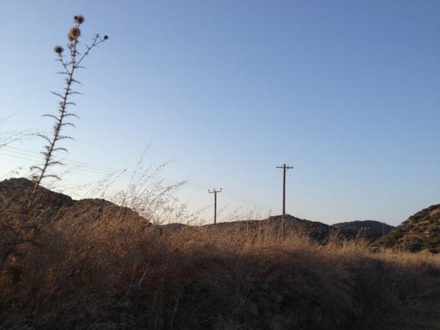 20120729-091907.jpg